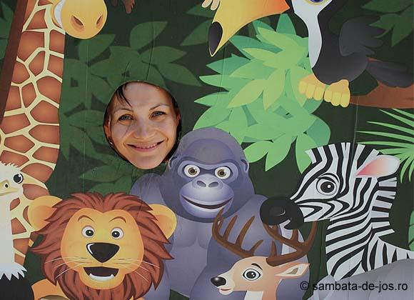 israel_2012_mirela_zoo.jpg