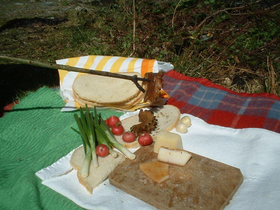 sambata_de_jos_picnic.jpg